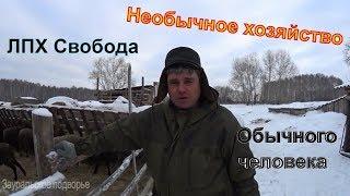 видео: Необычное хозяйство обычного человека //Деревенская жизнь