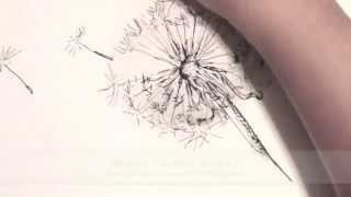 How to Draw a Dandelion Live Drawing in Ink