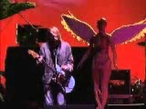 Nirvana - Breed - Roy Wilkins Auditorium St Paul MN (Short PRO Clips)