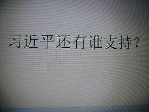 新中国论坛---习近平还有谁支持?