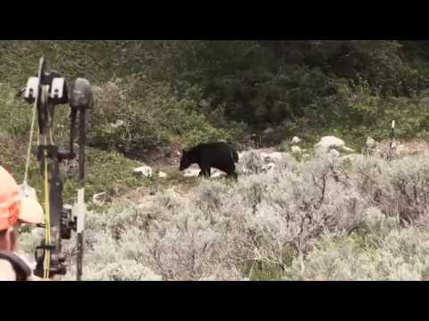 Eastmans' Hunting TV -  Bowhunting Black Bears in Wyoming - Outdoor Channel