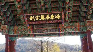 2018-1030 영주 浮石寺-백두대간 협곡열차(분천-…