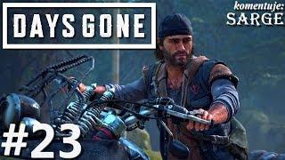 Zagrajmy w Days Gone PL odc. 23 - Pomoc w nowym obozie