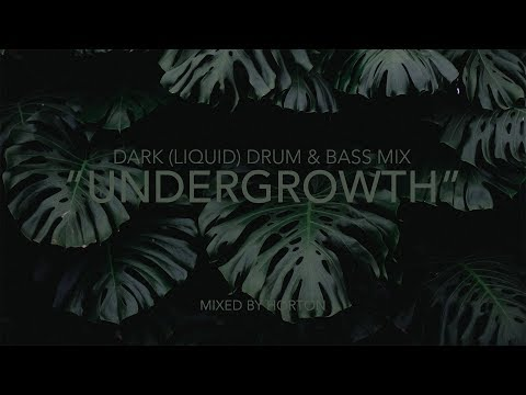 """Undergrowth"" ~ Dark Drum & Bass Mix"