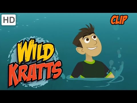 Wild Kratts - Olympic Diving