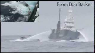 Dangerous activity by Sea Shepherd  シー・シェパードの危険行為-