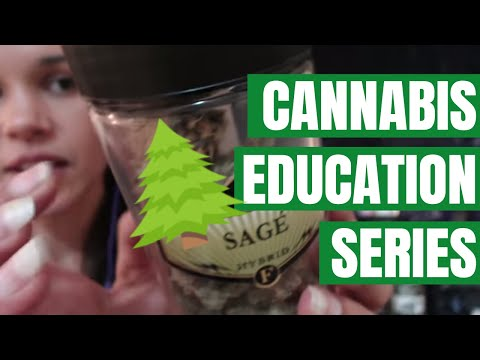 ASMR Cannabis Show and Tell~ Stories From a Budtender/MMJ Consultant
