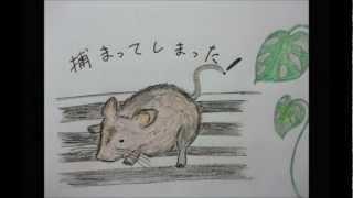 自作絵本 「とあるネズミの物語」