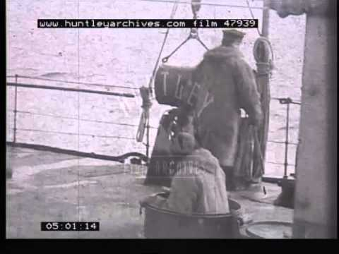 Polish Navy in WW2, 1940's - Film 47939