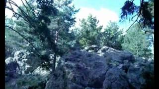Visitaragon. Camping Las Corralizas (Bronchales, Teruel)