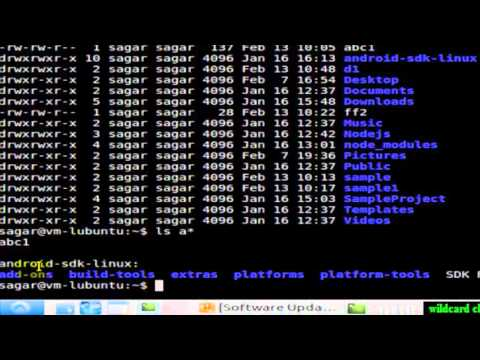 wildcard characters in Linux Shell terminal