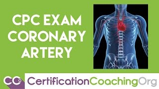 CPC Exam Coronary Arteries Questions and Answers