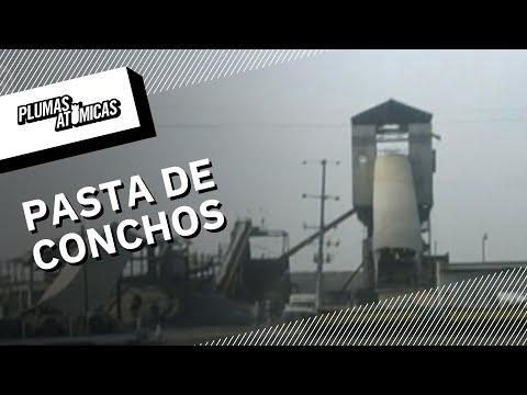 El derrumbe en Pasta de Conchos | ¿Y qué hizo Grupo México por los mineros?