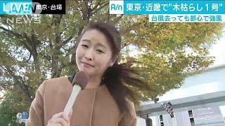 台風が過ぎ去った日本列島は一気に季節が前進する形になり、気象庁は30...