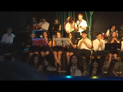 Numb (Linkin Park) (Recorder, Choral, Orchestra, Ensemble, Flauta-doce)