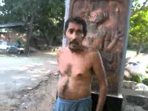 Desi Pagal