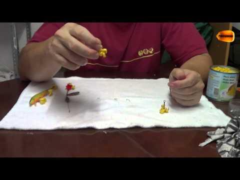 Cómo poner el maíz en el anzuelo. PESCA FÁCIL.