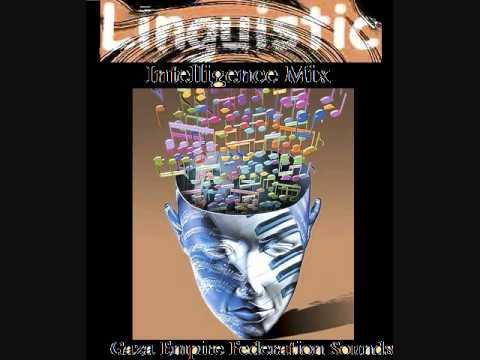 linguistic intelligence mix G E F S