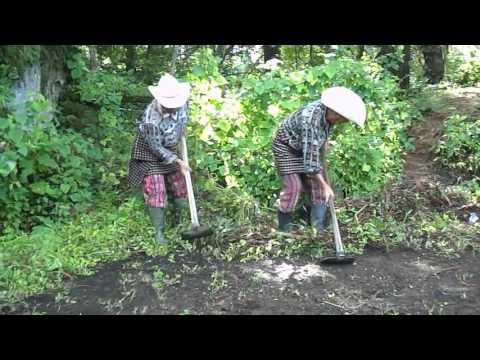 Organic Farming in Guatemala