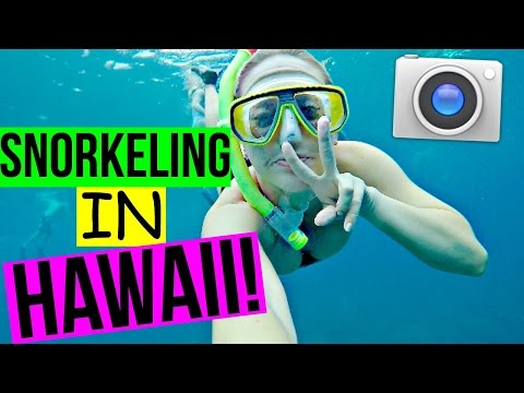 Snorkeling In Hawaii | Day 4