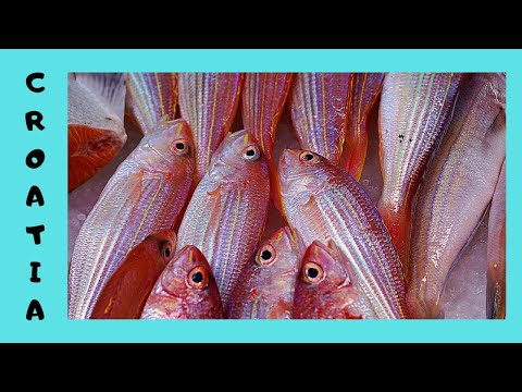 CROATIA, the graphic FISH MARKET in beautiful SPLIT