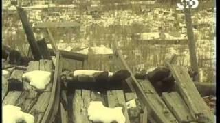 Колыма. Фильм 1-ый. История одного треста