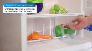 Холодильники INDESIT NBS з нижньою морозильною камерою