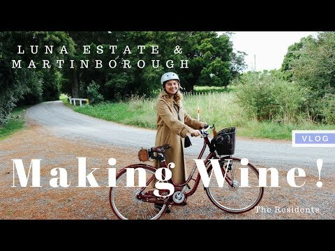 Wine Making in Martinborough! | The Residents