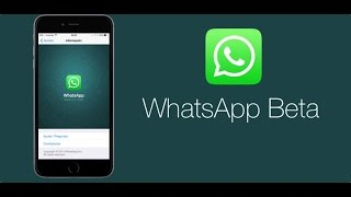 100% How To Download Beta Version Whatsapp For Android