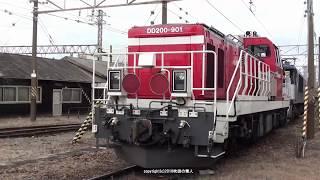 JR貨物 DD200 901号機甲種輸送 吹田機関区内移動・出区&吹田貨物タ出発(H30.1.14)