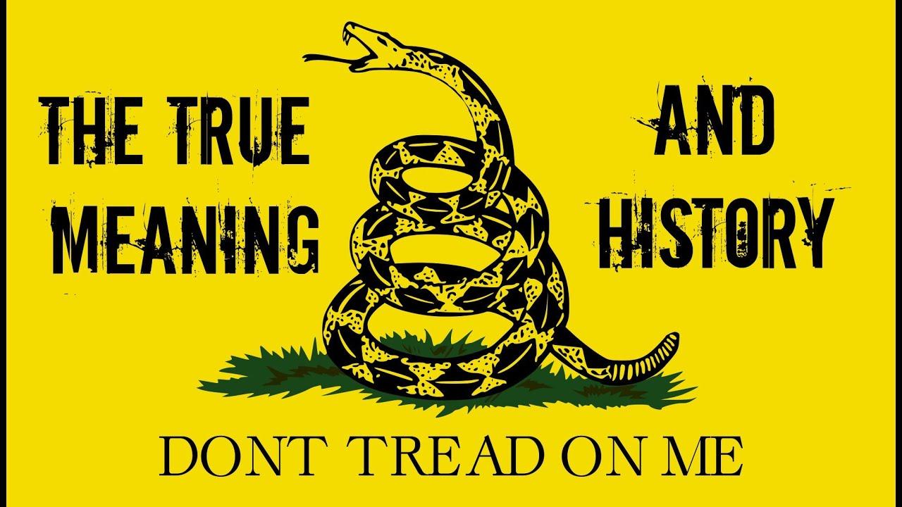 gadsden flag true meaning