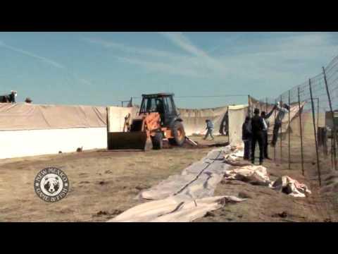 Antelope Trap and Santa Ana Pueblo Release