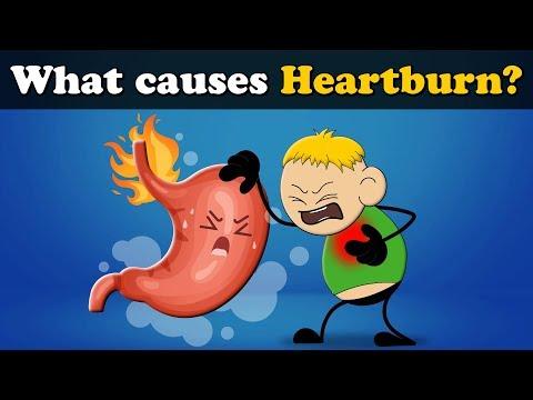 What Causes Heartburn? | #aumsum #kids #science #education #children