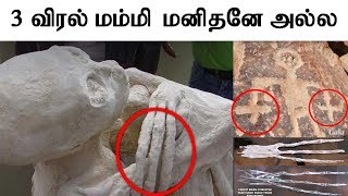 #8 👽 Peru three-fingered mummy mystery   3 விரல் மம்மி மனிதனே அல்ல   Mr.GK