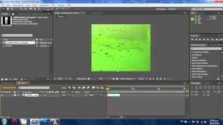 Morphing - Tutorial After Effects