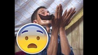 اغرب رقص مزمار  مضحك _شاهد اخر دقيقه _ 2017 _ جديد وحصرياً على قناة ديوان الفن  HD  