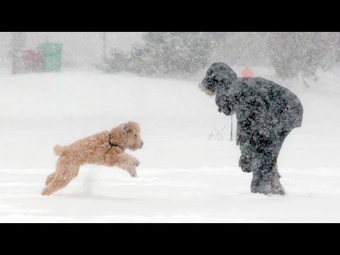 Froid S'habiller S'habiller S'habiller S'habiller Canada Avoir Pour Au L'hiver L'hiver L'hiver Youtube Pas Ne Comment 8Ptwqdq