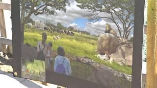 Crews Work To Build Zoo's Safari Africa Exhibit