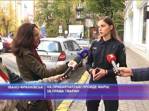 На Прикарпатські пройде марш за права тварин