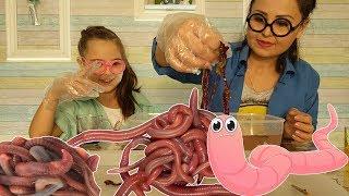 ЧЕРВИ своими руками do-it-yourself worms
