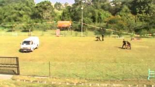 Anjing Unit K9 Penjara Malaysia 2015 - Part 3