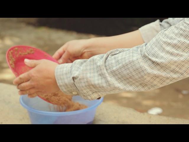 Video Tutorial: Pemanfaatan Lemna untuk Ransum Ikan