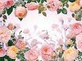 【坂本冬美 with M2】おばちゃんが歌う 花はただ咲く<歌詞付き>