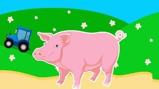 Мультик для Детей про Домашних Животных - Свинью.Развивающий Мультфильм для Малышей. Видео для Детей