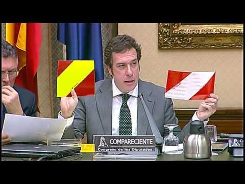 Congreso de los Diputados Comparecencia Emilio Dominguez Del Valle