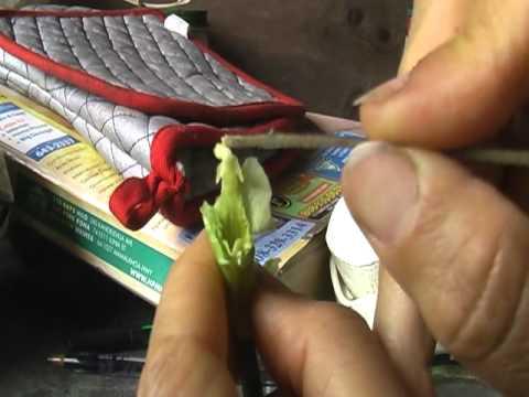 Vanilla Pollination method 1
