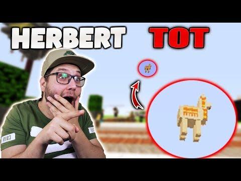 HERBERT IST TOT?!
