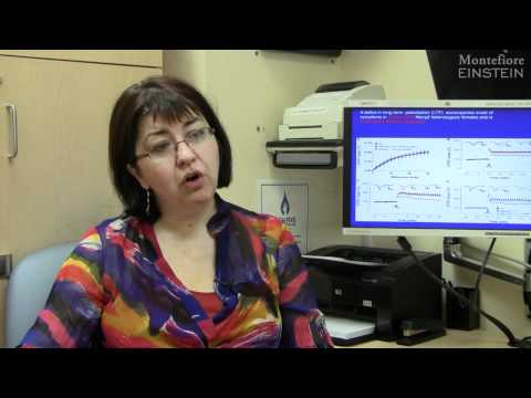 Cognitive Abilities of Rett Syndrome Patients have been