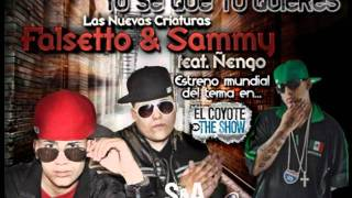 YO SE QUE TU QUIERES REMIX  ÑEÑGO FLOW ,FALSETTO Y SAMMY DJ DITNERS