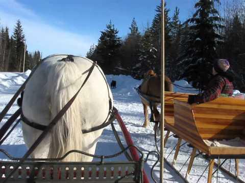 Valentines sleigh drive 2